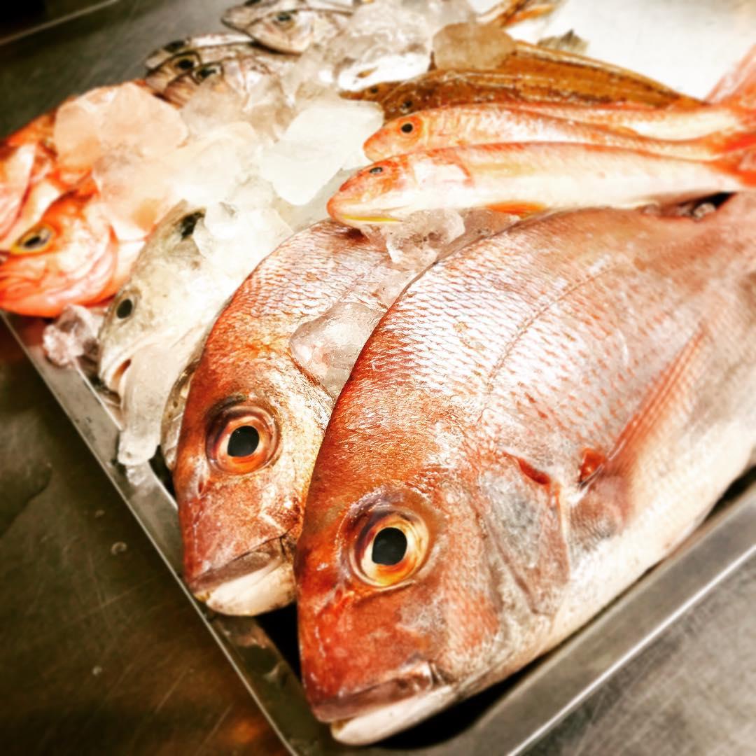 新鮮なお魚がはいりましたアクアパッツァ、ズッパディペッシェ、グリルでも美味しく召し上がれますぜひ、ご賞味ください