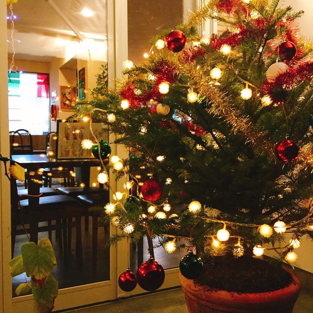 秋から冬へ… まだ11月ですがクリスマスツリー飾り付けしました