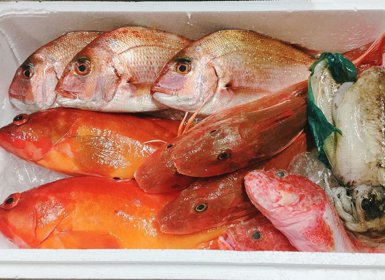 豊洲市場から新鮮な魚介が入荷しましたー️ 福岡の天然真鯛、ホウボウ、コウイカ。 長崎のアカハタとオニカサゴ。  特にイチオシはアカハタ️ アクアパッツァでお出しします。 ちょっと良いお値段ですが、絶対美味しいので是非 コウイカのイカスミパスタ、リゾットも好評です