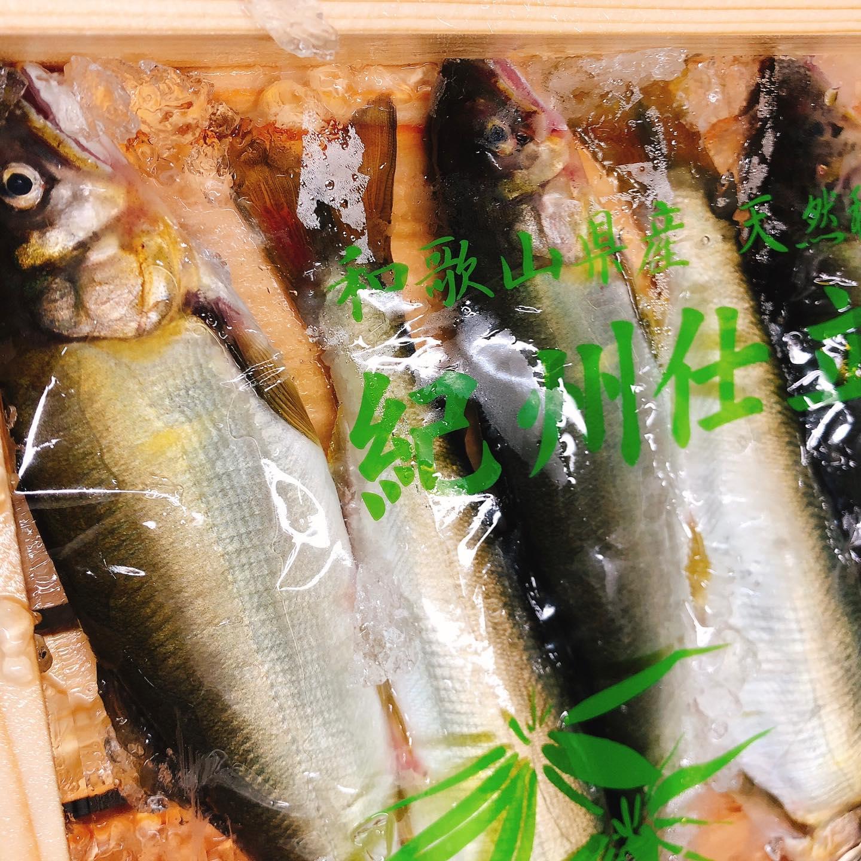 鮎のコンフィ️ 夜な夜な製作中  骨まで食べれます  鮎は栄養がたっぷり! 特にビタミンAが豊富に含まれています。 ・動脈硬化や心筋梗塞などの予防 ・免疫力を高める働き ・がんの予防 他にもビタミンB12やミネラル、DHA、EPAなどが摂れるので美味しくて栄養価も高い嬉しい食材です。 テイクアウトも出来ます。  今週もよろしくお願い致します🏻  #鮎  #肉の盛り合わせ  #群馬  #イタリア料理
